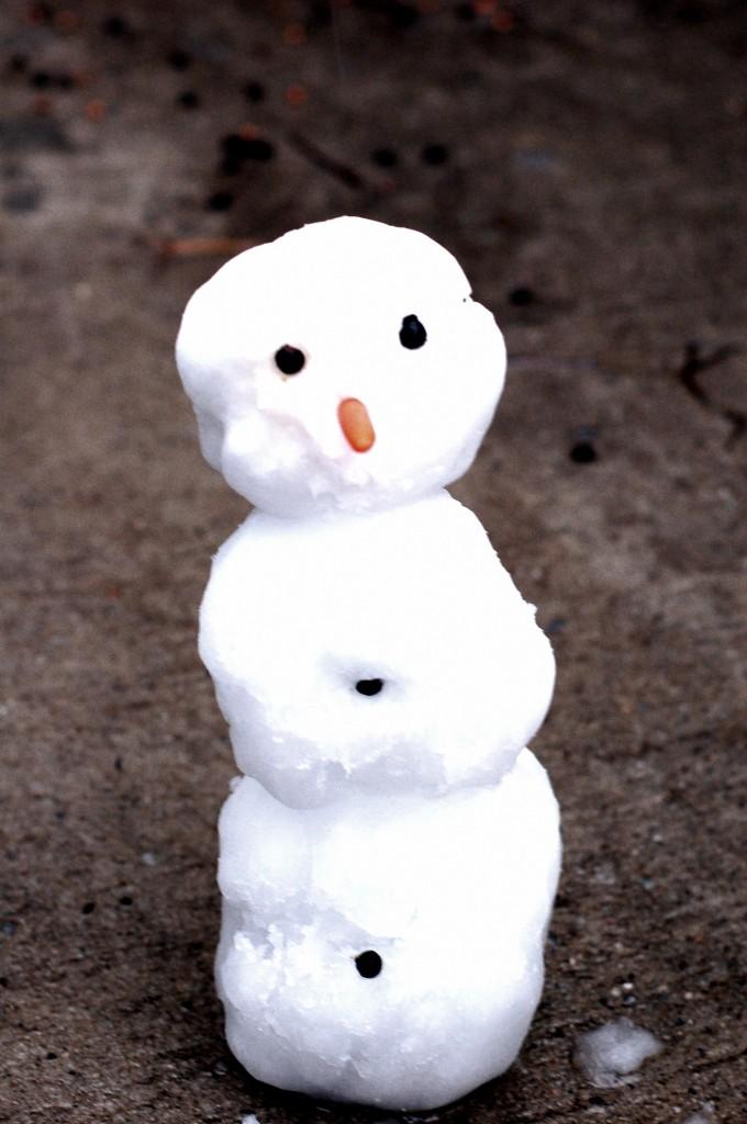 snowday-50
