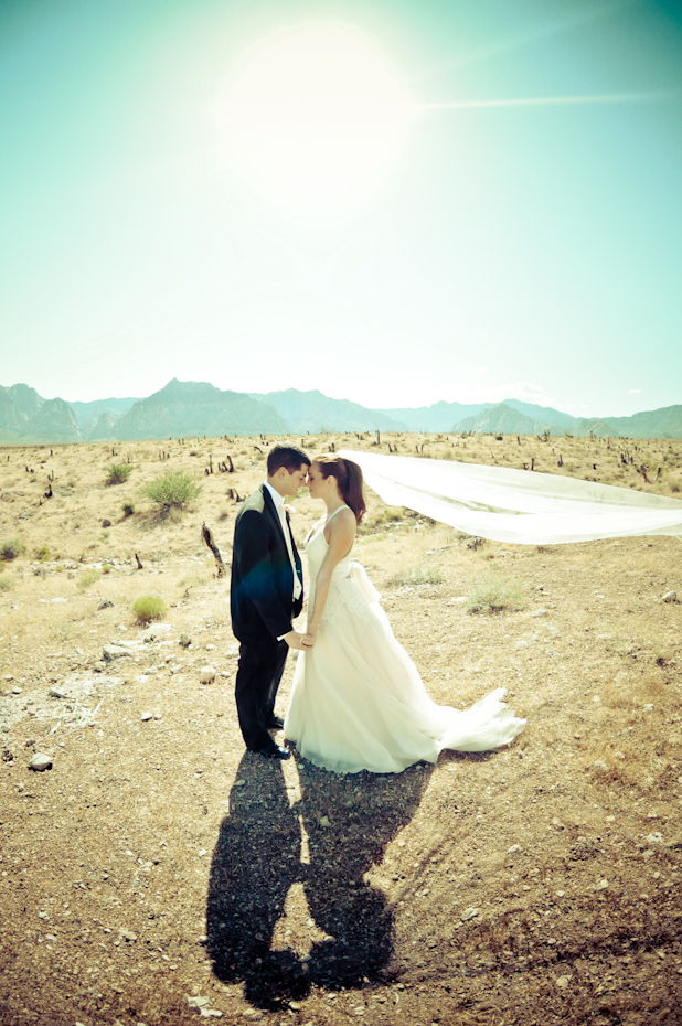 bride at red rock canyon