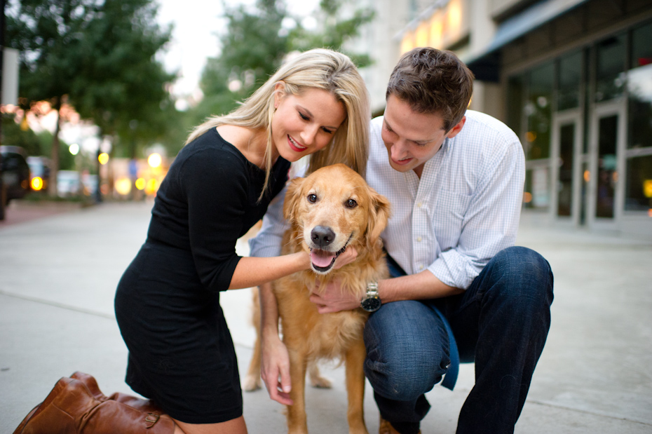 Dog in engagement pictures