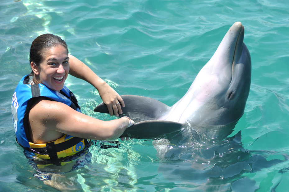 Picture from Dolphin Discovery Isla Mujeres