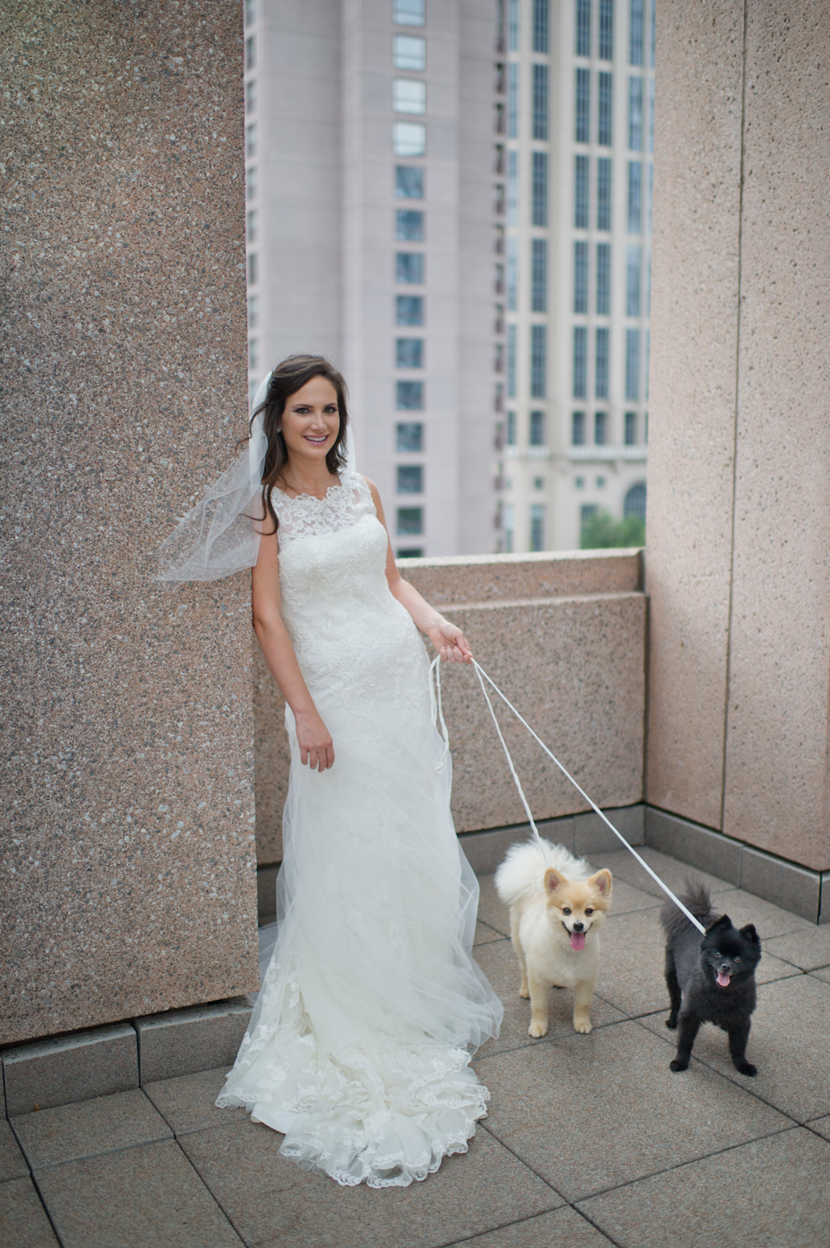 Dogs in Bridal Portrait