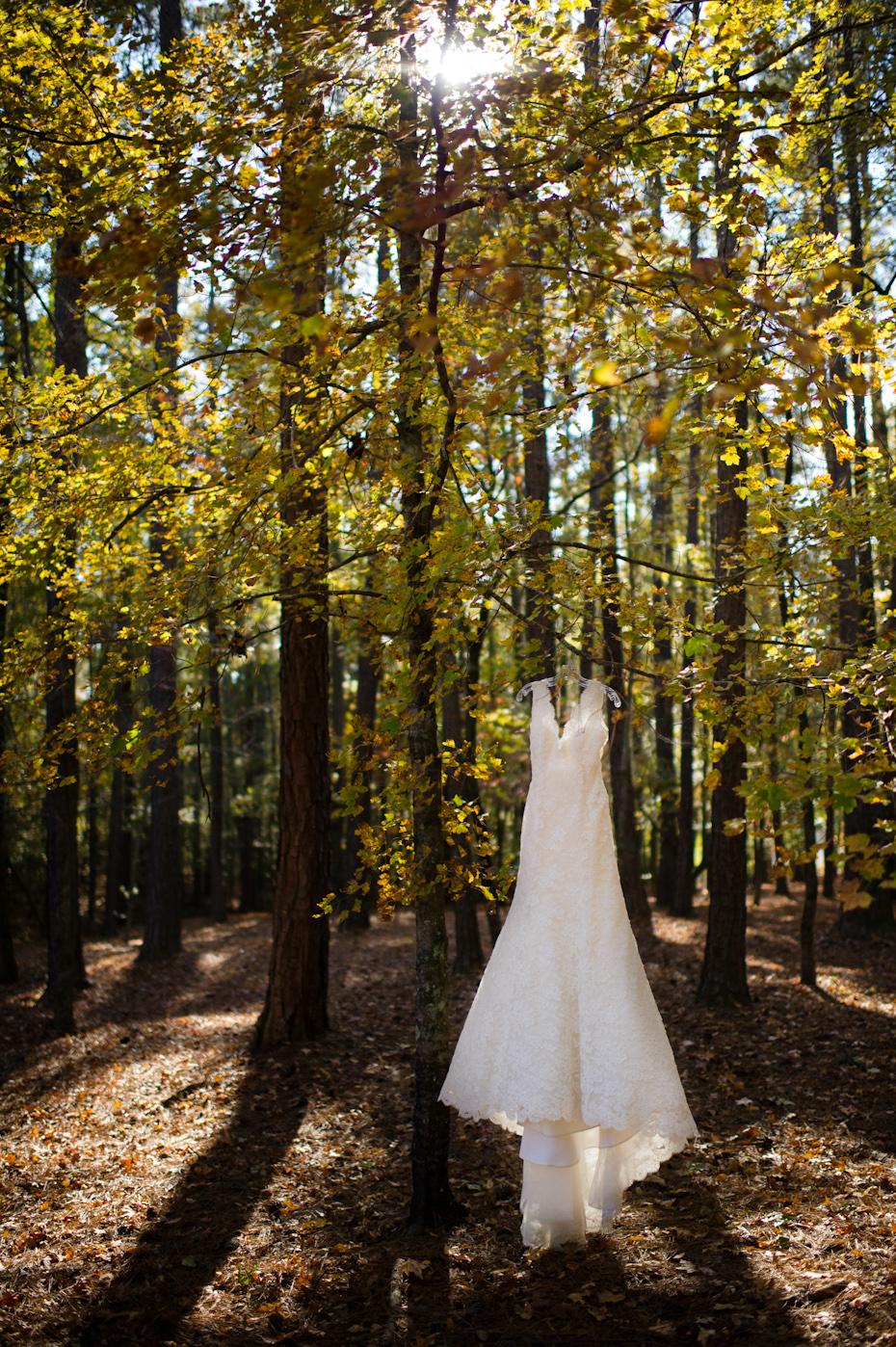 Rivini Wedding Dress from Bridals by Lori