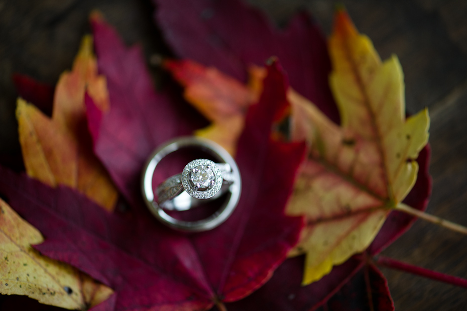 Wedding Rings in the fall