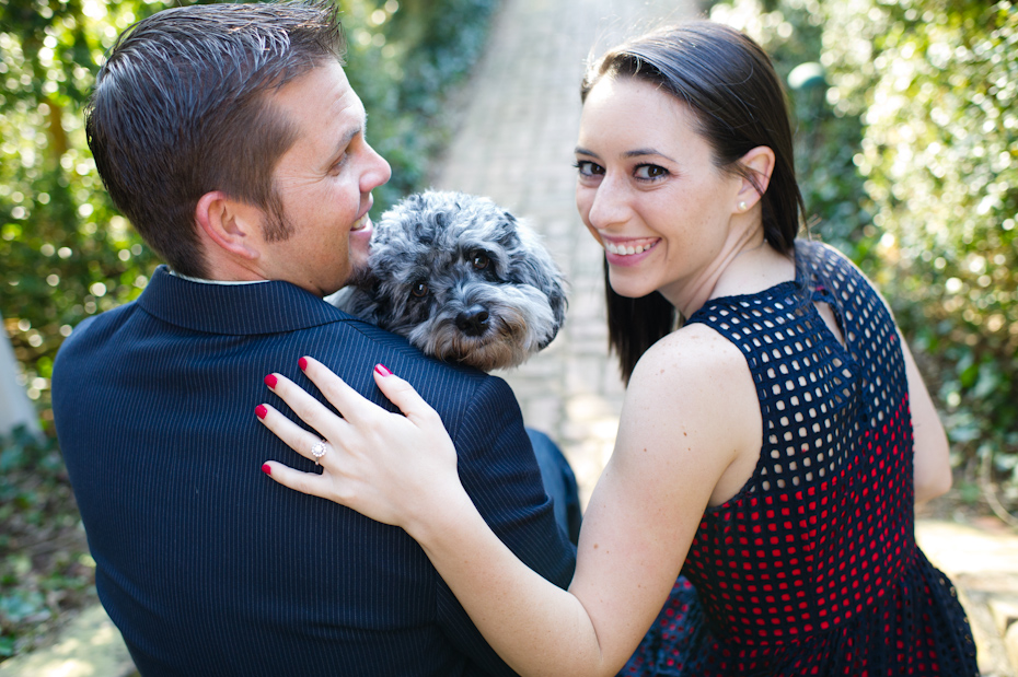 Dog in Engagement Photos