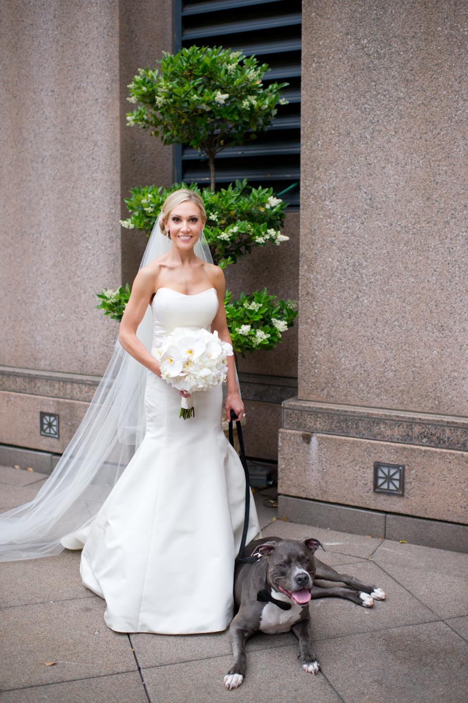 Bride wedding photo with dog