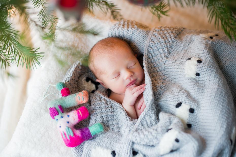 Newborn Photos at Christmas